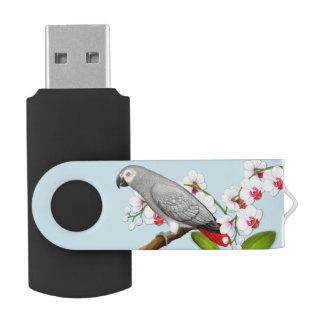 Afrikanisches Grau-Papagei Blitz-dem Antrieb in USB Stick