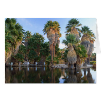 Agua Caliente Park Karte