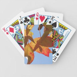 Ahorn-Blätter Bicycle Spielkarten