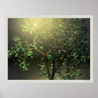 Ahornbaum des Japaner-3D Poster