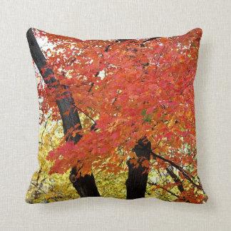 Ahornbaum-Herbst Kissen
