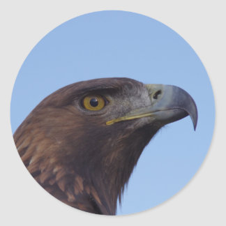 Aigle d'or sticker rond