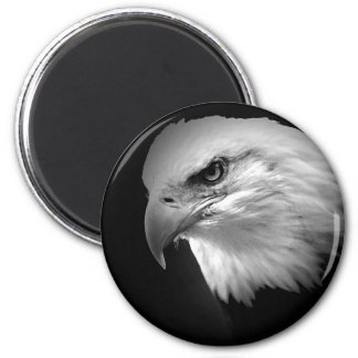 Aimant BW Eagle chauve