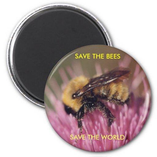 Aimant d'abeille
