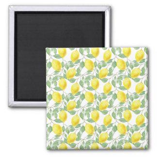 Aimant de citrons