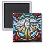 Aimant de colombe de fenêtre en verre teinté