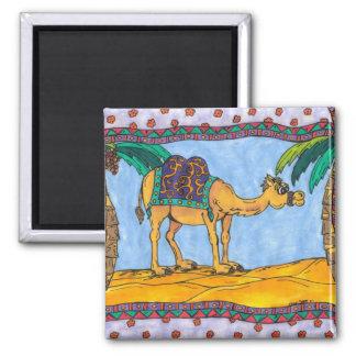 Aimant fol de chameau