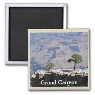 Aimant frais de canyon grand !