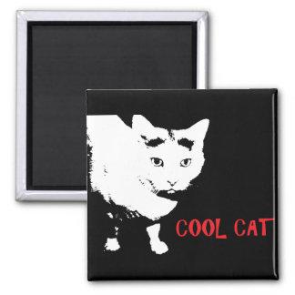 AIMANT FRAIS DE CAT