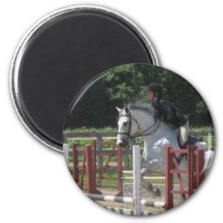 Aimant gris aciéreux de poney