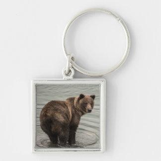 Alaska-Braunbär (Graubär) Schlüsselanhänger
