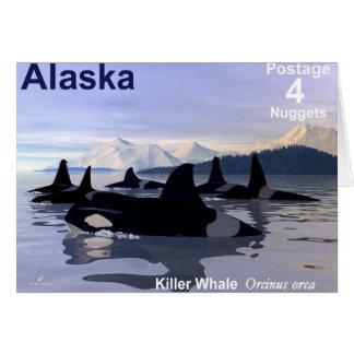 Alaska-Mörder-Wal-Briefmarke Karte