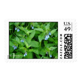 AlaskaBluebell 07 Briefmarke