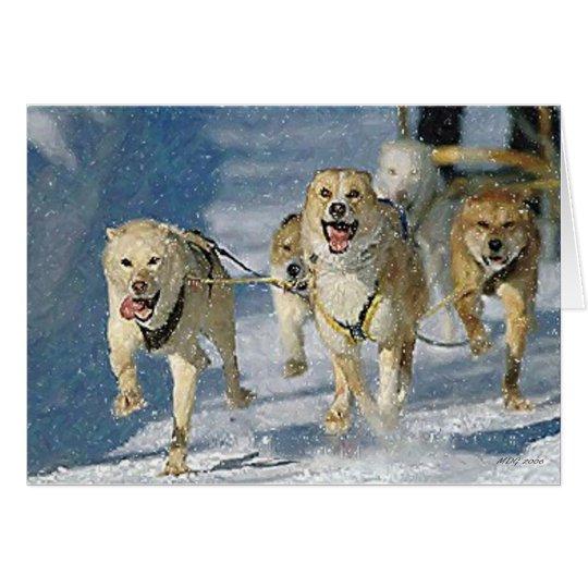 Alaskische Schlitten-Hunderaum-Gruß-Karte Grußkarte