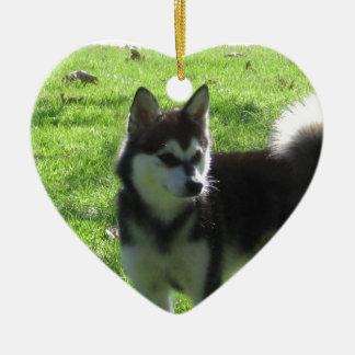 Alaskischer Klee Kai Hund Keramik Herz-Ornament