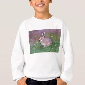 Alaskisches Kaninchen Sweatshirt