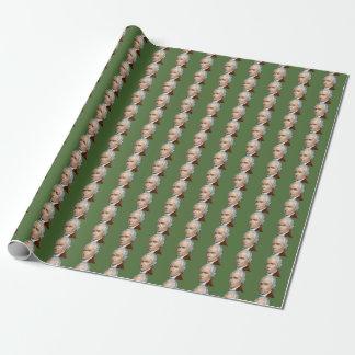 Alexander Hamilton-Packpapier Einpackpapier