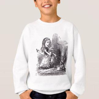 Alice und die Katzen Sweatshirt
