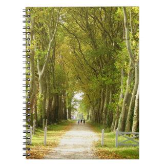 Allee des Baum-Foto-Notizbuches Notizblock