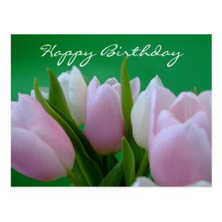 Alles Gute zum Geburtstag - Tulpe-Postkarte Postkarte