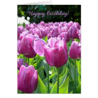 Alles- Gute zum Geburtstaggruß-Karten-lila Tulpen Karte
