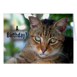 Alles- Gute zum Geburtstagkatze Karte