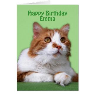 Alles- Gute zum Geburtstagorange und weiße Katze Karte