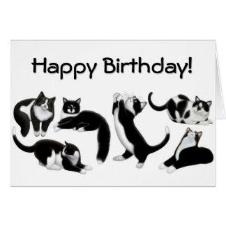 Alles- Gute zum GeburtstagSmokings-Katzen-Karte Karte