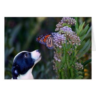 Alles- Gute zum Geburtstagwelpe und Schmetterling Karte
