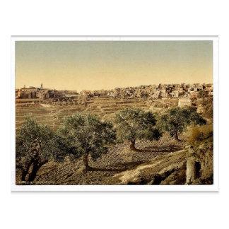 Allgemeine Ansicht von gut von David, Bethlehem, Postkarte