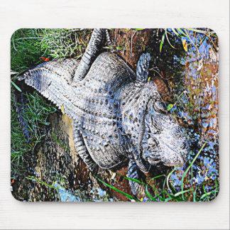 Alligator (Florida, Louisiana und Mississippi) Mousepad