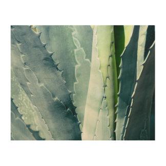 Aloe Holzdruck