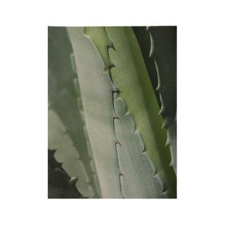 Aloe - MakroKunst-Fotografie Holzposter