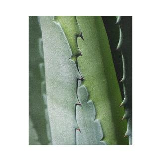 Aloe - MakroKunst-Fotografie Leinwanddruck