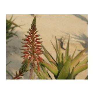 Aloe-Vera-Blumen-Fotografie-hölzerne Wand-Kunst Holzwanddeko