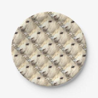Alpaka weiß pappteller 17,8 cm