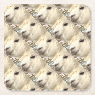 Alpaka weiß rechteckiger pappuntersetzer