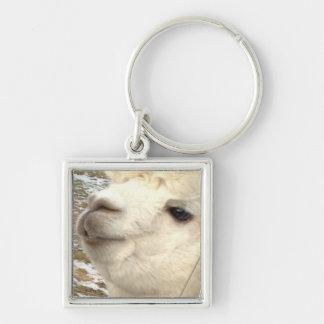 Alpakas Silberfarbener Quadratischer Schlüsselanhänger