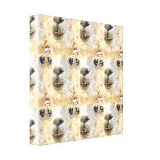 Alpakas überall leinwanddruck