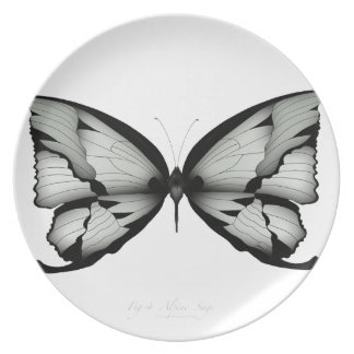 Alpiner weiser Schmetterling Essteller