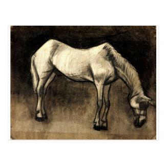 Alter Nag durch Vincent van Gogh Postkarte