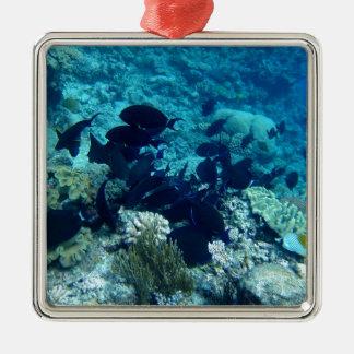 Am Barrier Reef Silbernes Ornament