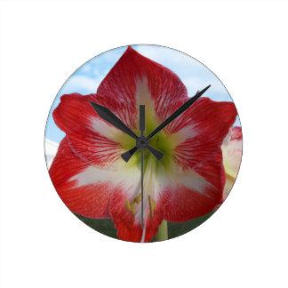 Amaryllis 106a rotes und weißes MegaStar2 Runde Wanduhr