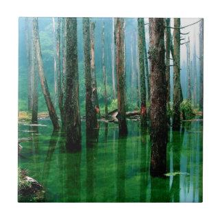 Amazonas-Sumpf Keramikfliese
