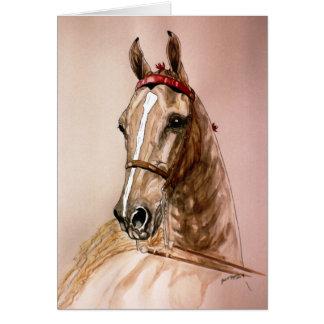 Amerikaner Saddlebred Pferd Karte
