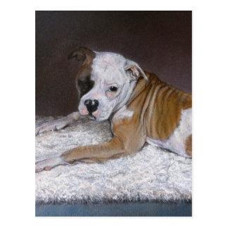 Amerikanische Bulldoggen-Malerei Postkarte