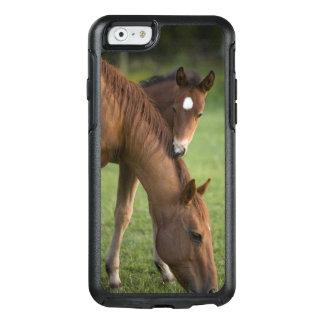 Amerikanische Quarterhorsestute und -colt auf dem OtterBox iPhone 6/6s Hülle