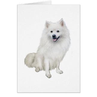 Amerikanischer Eskimohund (a) Grußkarte