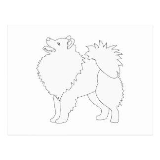 Amerikanischer Eskimohund bereit, Entwurf zu Postkarte