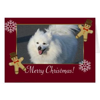 Amerikanischer Eskimohund der frohen Weihnachten Karte